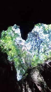 20100516-30.JPG