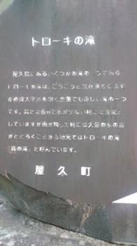 20100613-17.JPG